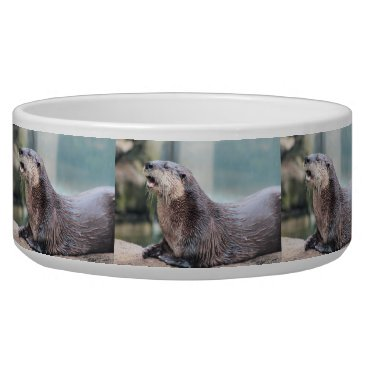 USA Themed Otterly hilarious bowl