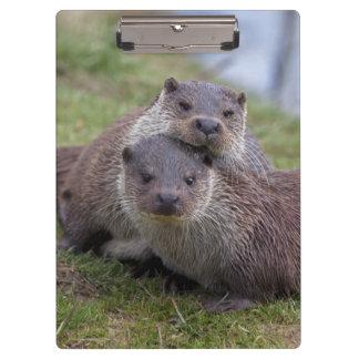 Otterly in Love Clipboard
