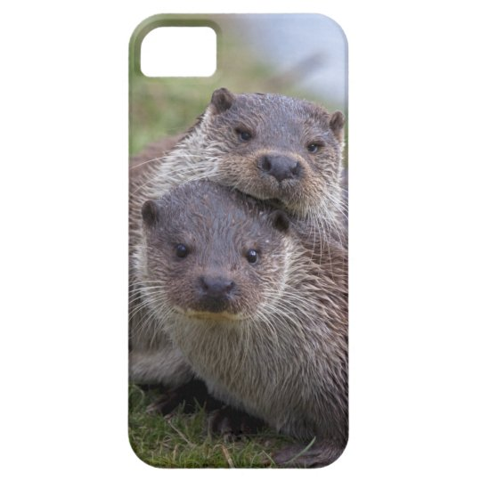 Otterly in Love iPhone 5 Case-Mate Case