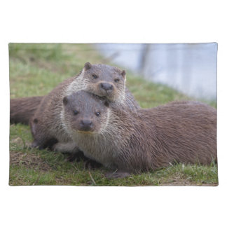 Otterly in Love Placemat