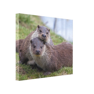 Otterly in Love Wrapped Canvas Print