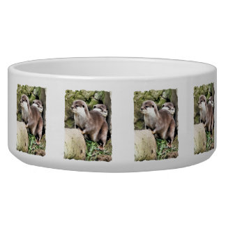 OTTERS BOWL