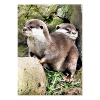 OTTERS BUSINESS CARD TEMPLATES