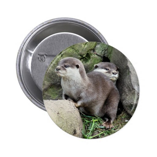 OTTERS BUTTONS