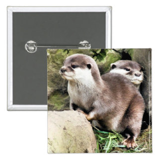 OTTERS BUTTON