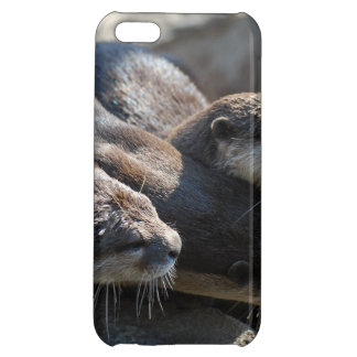 Otters iPhone 5C Covers