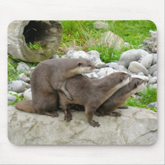 Otters Mousepads