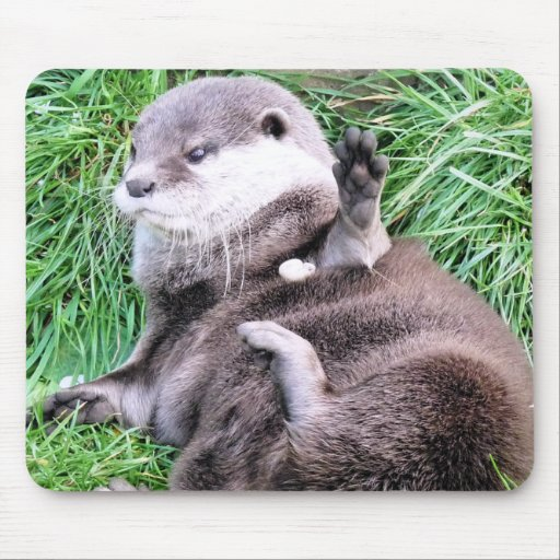 OTTERS MOUSE PADS