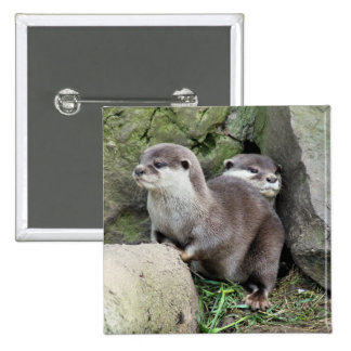 OTTERS PINBACK BUTTON
