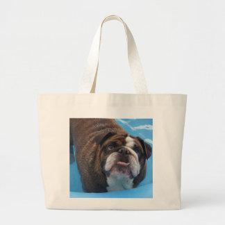 Otto Pool Bag