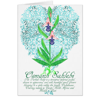 Ottoman Orchid Card Greeting Card