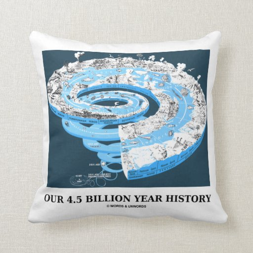 Our 4.5 Billion Year History (Geological Time) Throw Pillow