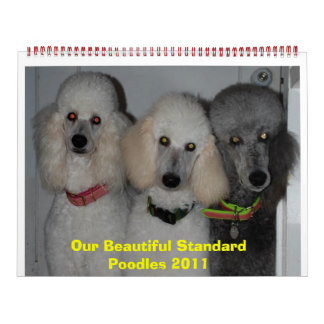 Our Beautiful Standard Poodles 2011 Calendars