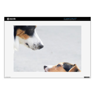 our best friends on four paws - serie 001 laptop decal