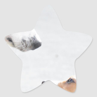 our best friends on four paws - serie 001 star sticker