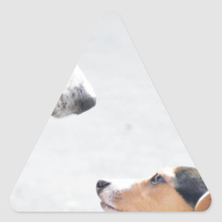 our best friends on four paws - serie 001 triangle sticker
