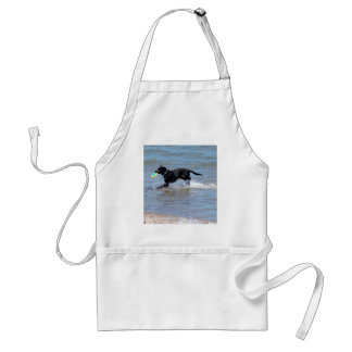 Our Black Labrador Retrieving Frisbee from Lake Adult Apron