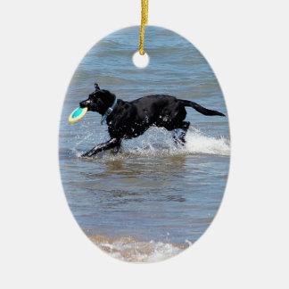 Our Black Labrador Retrieving Frisbee from Lake Ceramic Ornament