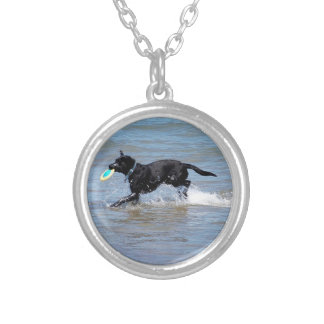 Our Black Labrador Retrieving Frisbee from Lake Necklaces