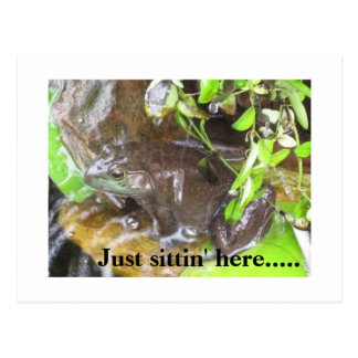 our bullfrog photo, Just sittin' here..... Postcard
