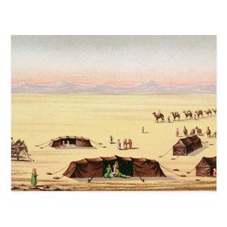 Our Desert Camp Postcard