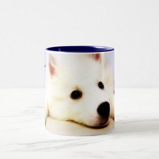 Our Dog Wiess I Photographed! Two-Tone Coffee Mug