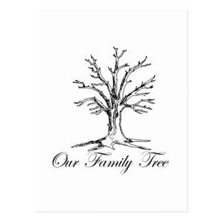 Our Family Tree Postcard