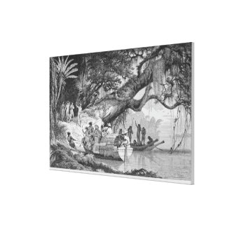 Our First Interview with Caripuna Indians Canvas Print