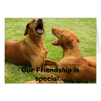 Our Friendship is special... Greeting Card