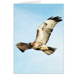 """""""Our Greatest Glory.  ."""" Red-Tailed Hawk in Flight Card"""