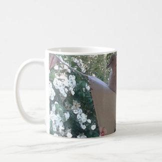 Our Hand reared Dove bunting Garden mug