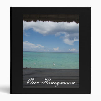 """""""Our Honeymoon"""" thatched cabana binder"""