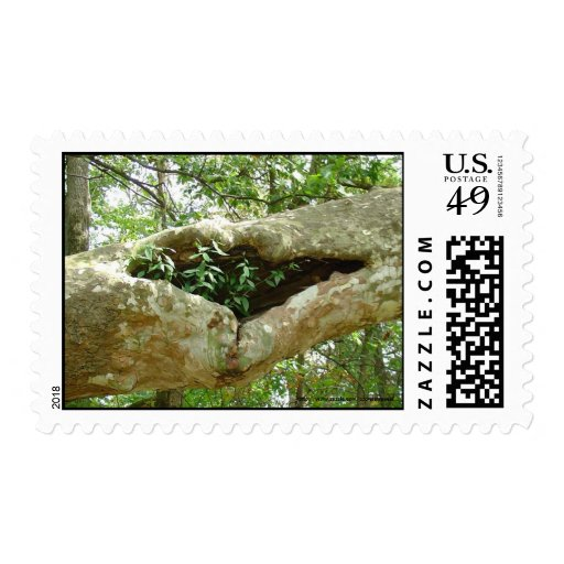 Our House Postage Stamp