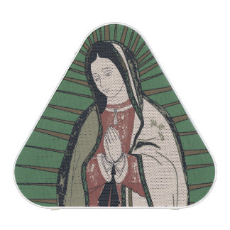 our lady of guadalupe speaker
