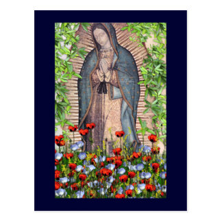 Our Lady of Guadelupe Postcard