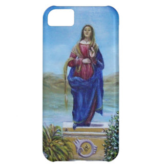 OUR LADY OF LIGHT iPhone 5C CASE