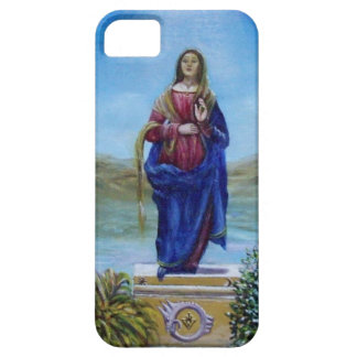OUR LADY OF LIGHT iPhone SE/5/5s CASE