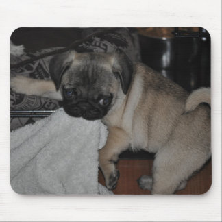 Our little puppy mouse pad