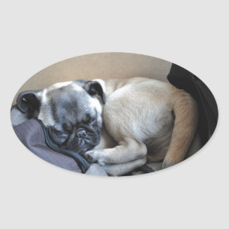 Our little puppy oval sticker