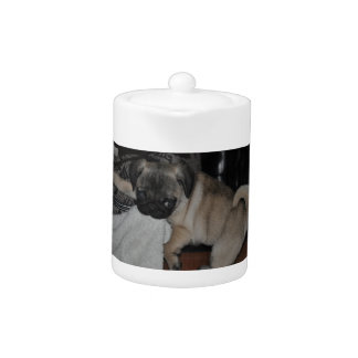 Our little puppy teapot