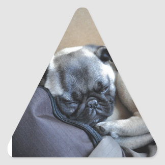 Our little puppy triangle sticker