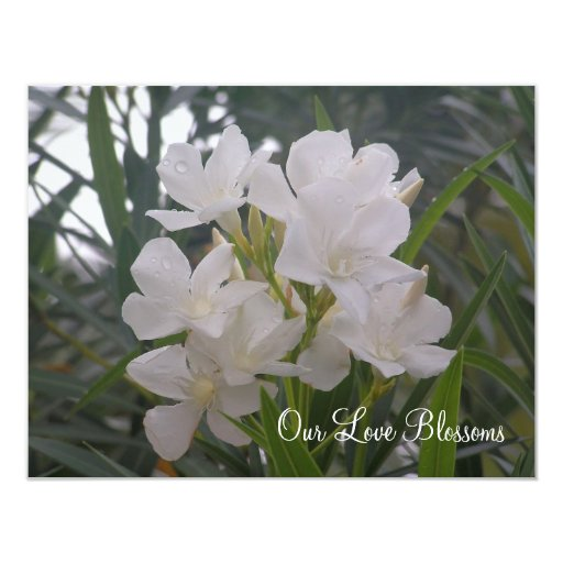 Our Love Blossoms Save The Date Card