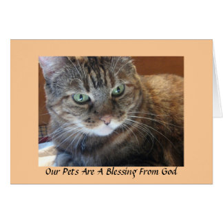 Our Pets Are A Blessing From God Card