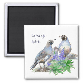 Our place is for the birds, California Quail 2 Inch Square Magnet