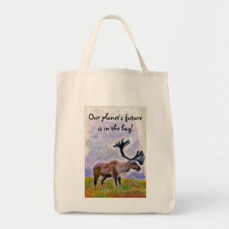 """""""Our planet's future is in the bag!"""" Canvas Bag"""