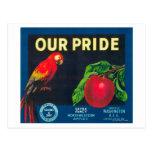 Our Pride Apple Label - Washington State Postcards