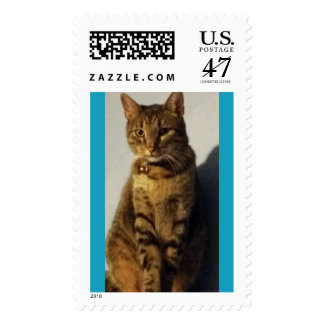 Our tabby cat Link Postage