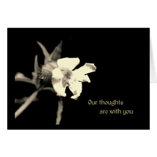 Our thoughts are with you greeting card