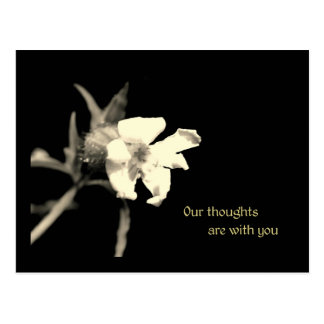 Our thoughts are with you postcard
