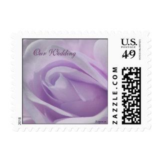 Our Wedding Lavender Flower Postage Stamps